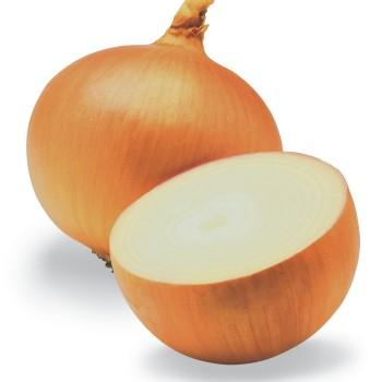 Cebola1