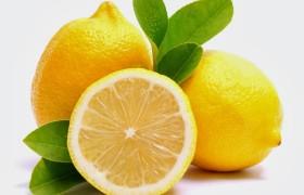 limão siciliano bem orgânicos