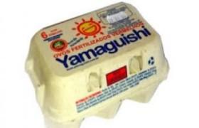 ovos yamaguishi