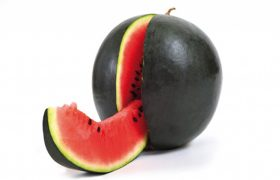 melancia-preta-organica-1